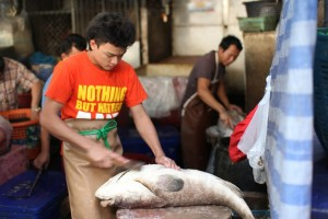Khlong Toei Market - Fish
