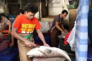 Khlong Toei Market - Fish