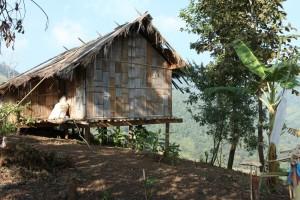 Bamboo Hut